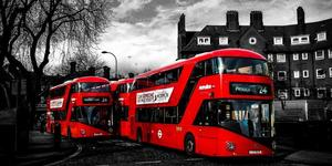 9 Themed Bus Routes You Should Try