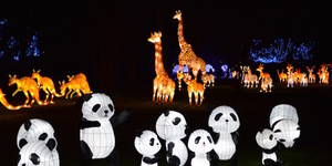 Ticket Alert: Chiswick Magical Lantern Festival Returns For 2017