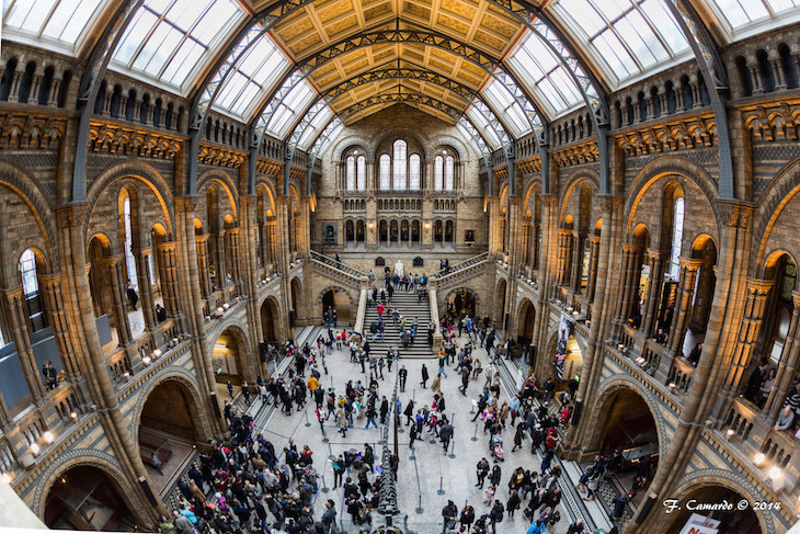 Spend New Year's Eve With The Dinosaurs At Natural History Museum