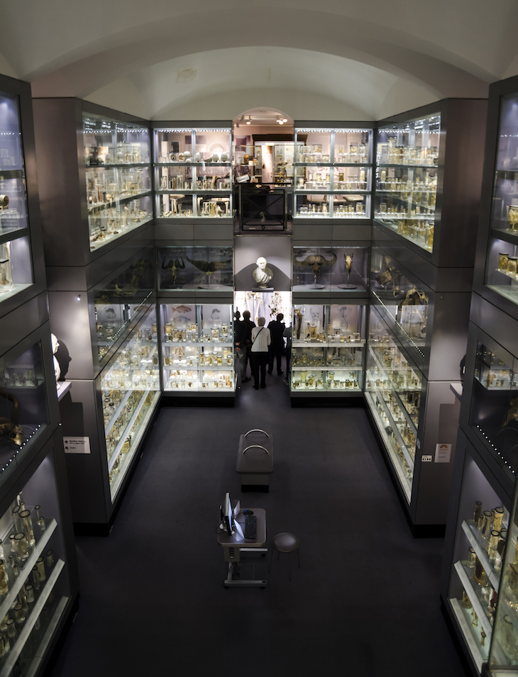 Where To Explore Science In London