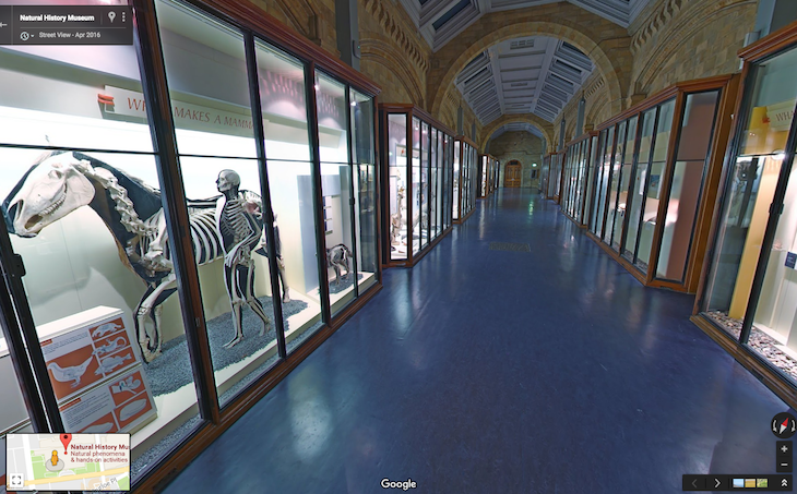 See Inside The Natural History Museum Using Google Street View