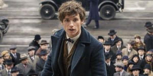 Everything You Need To Know About Fantastic Beasts And Where To Find Them