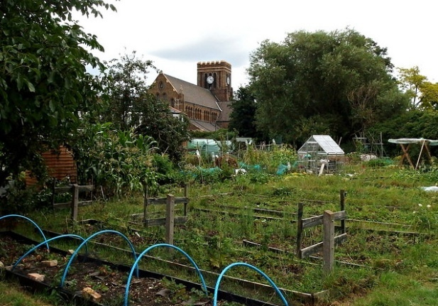 London News Roundup: London's Oldest Allotments Under Threat