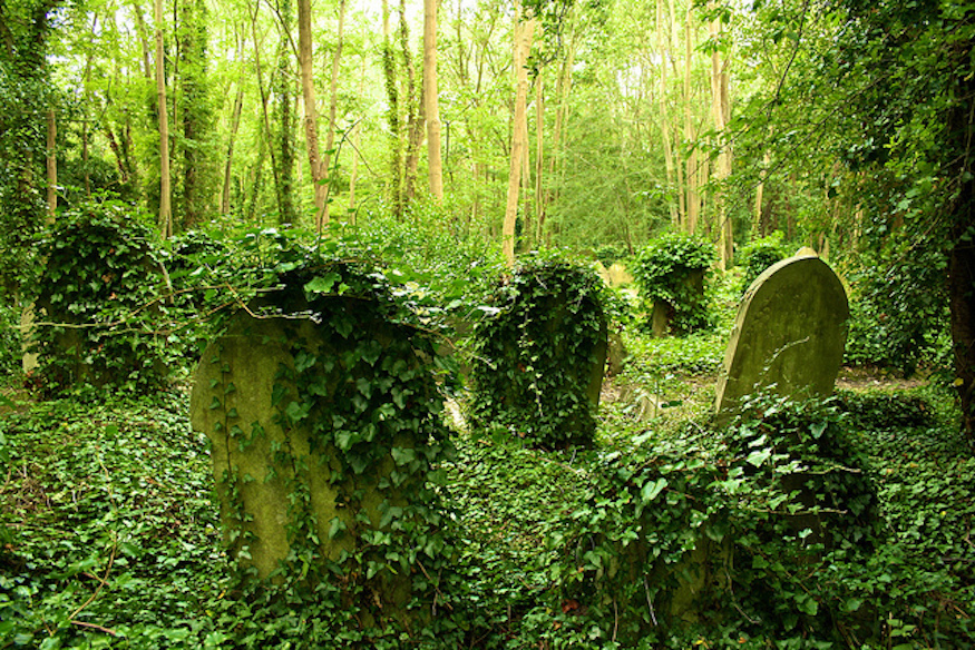 7 Magnificent Secrets Of Highgate Cemetery