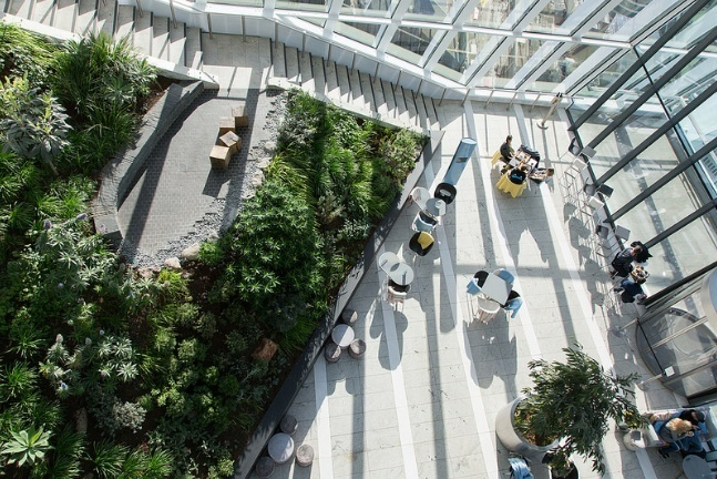 Done These Things In The Skygarden?