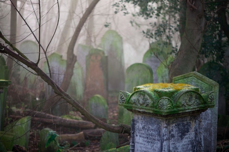 Overgrown And Overcrowded: Secrets Of Tower Hamlets Cemetery