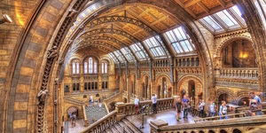 7 Secrets Of The Natural History Museum