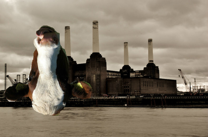 If London Buildings Were Animals...