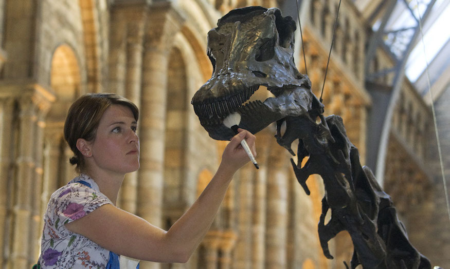 Conservation specialist Helen Walker gives Dippy a clean