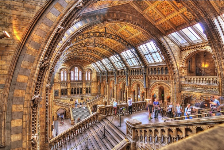 7 Interesting Facts About The Natural History Museum