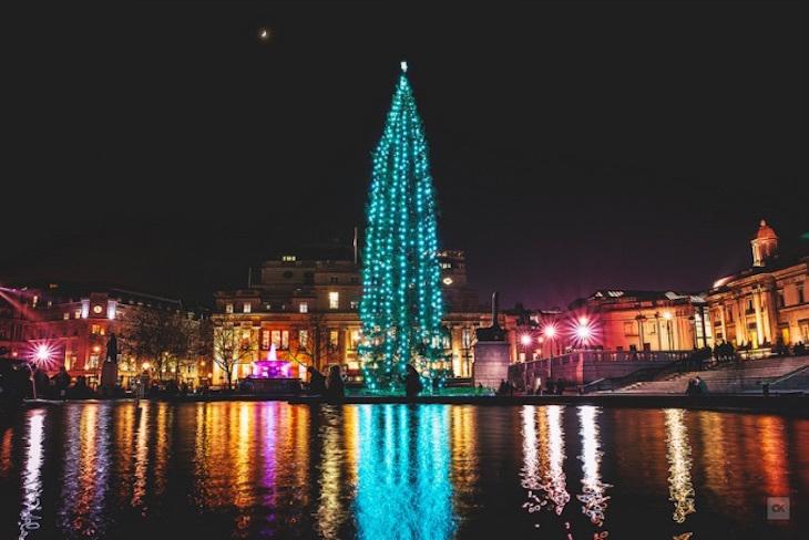 London's Best Christmas Trees 2016