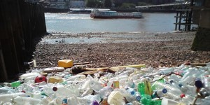 The Bits Of Plastic That Are Polluting The Thames
