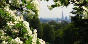 7 Secrets Of Hampstead Heath