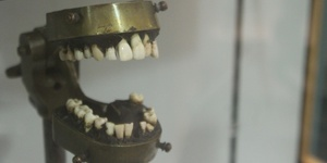 The London Museum That's All About Teeth