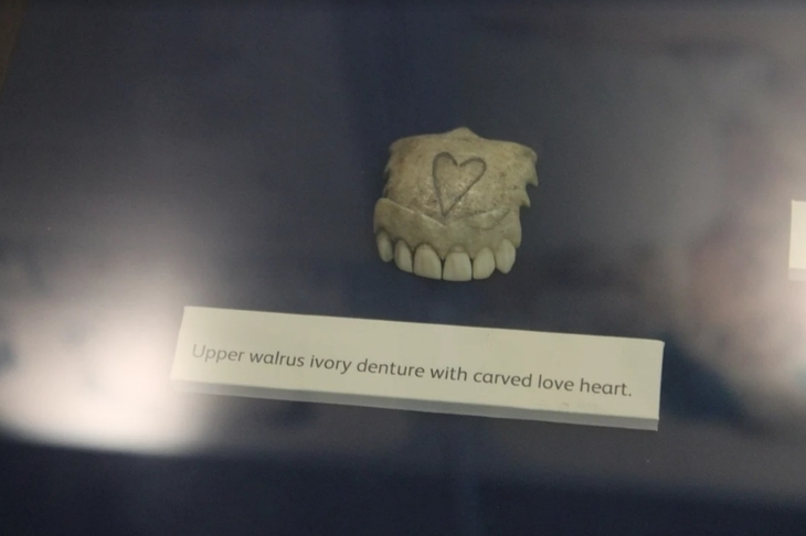 The London Museum That's All About Teeth | Londonist