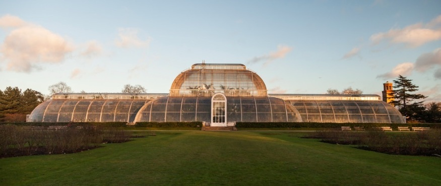 Things you might not know about @kewgardens