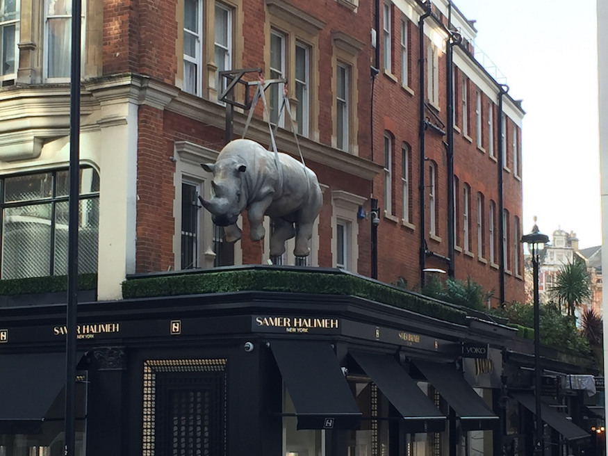 The Dangling Rhinoceros Of Knightsbridge