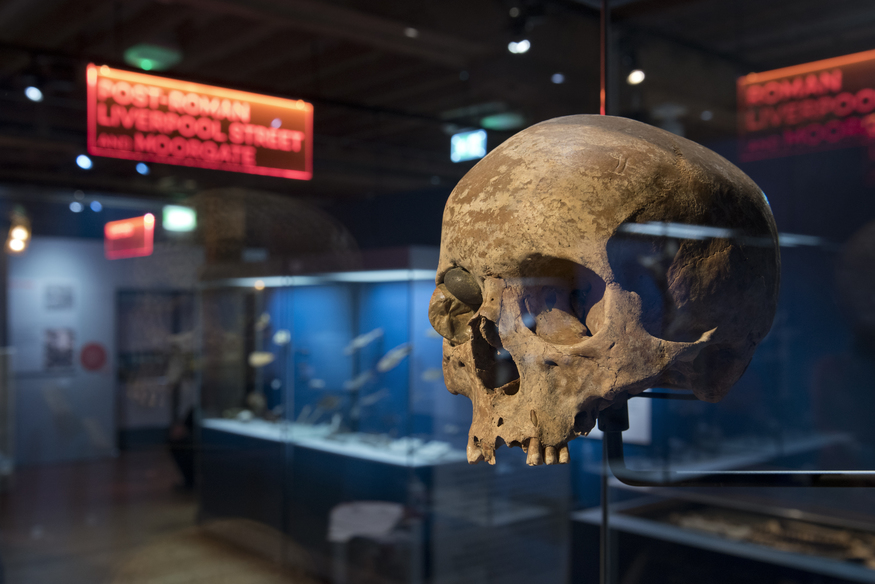 Mammoths, Romans And The First Railways: Crossrail Treasures Uncovered