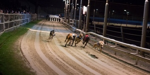 Farewell To The Wimbledon Dogs