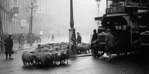 Fascinating Photos Of London In 1928