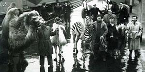 In Photos: London In 1957
