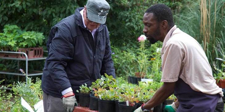 London's Best Community Gardens