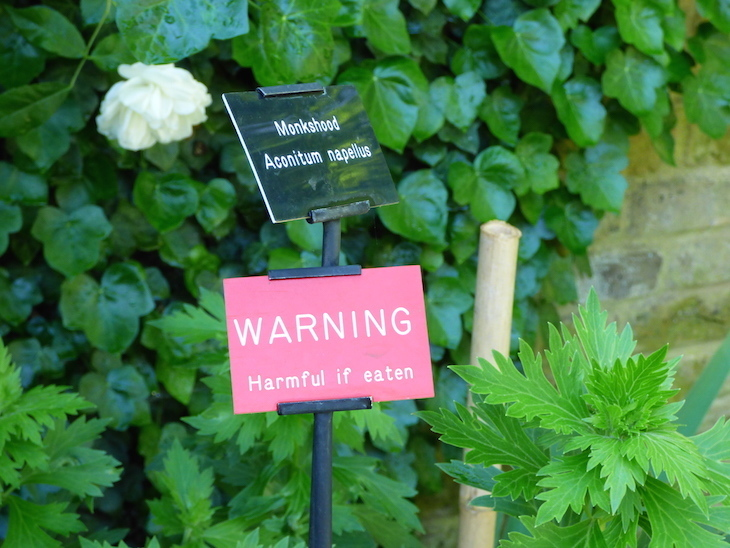 London's Little Gardens: Geffrye Museum's Herb Garden
