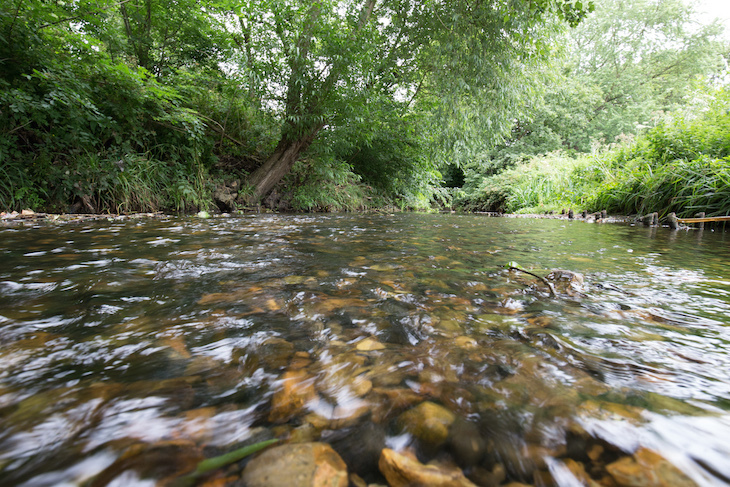 The 20 Best Sanctuaries For Enjoying London 39 S Rivers Londonist
