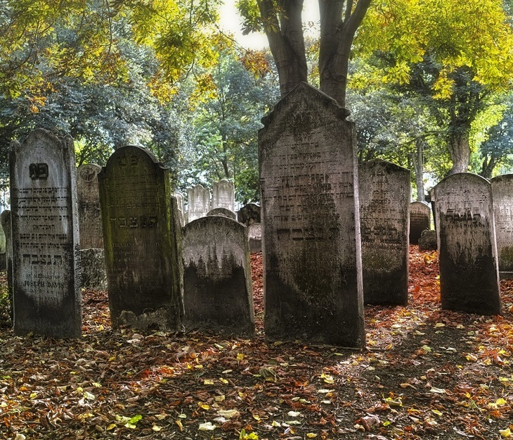 The Whitechapel cemeteries returning to nature