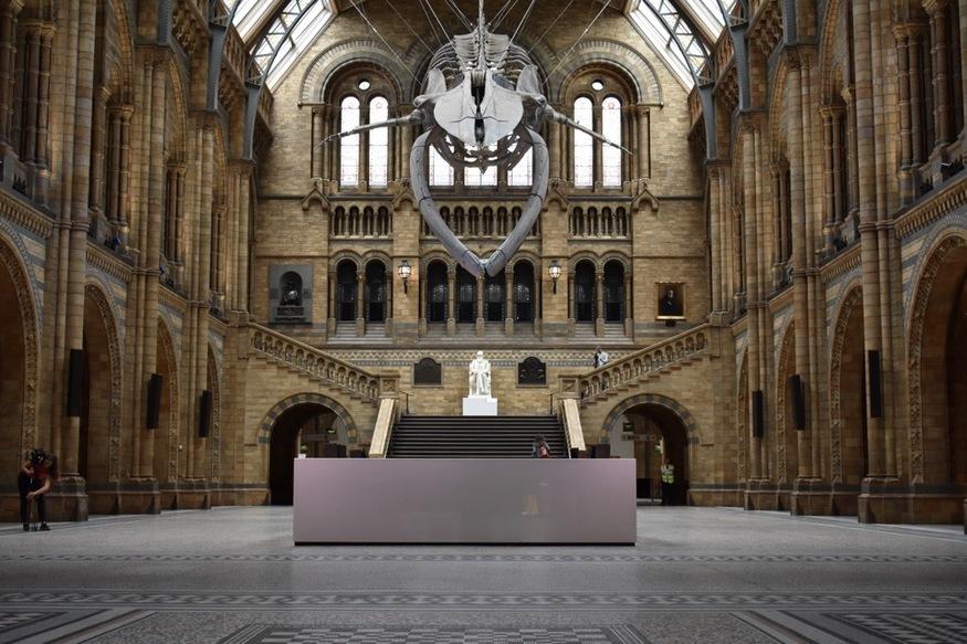museum hastighed dating london to brødre der dør to søstre