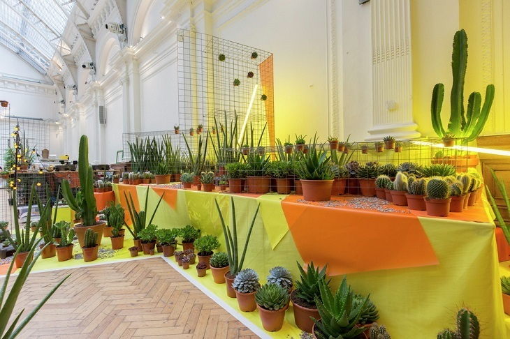 The RHS London Summer Urban Garden Show Is Here