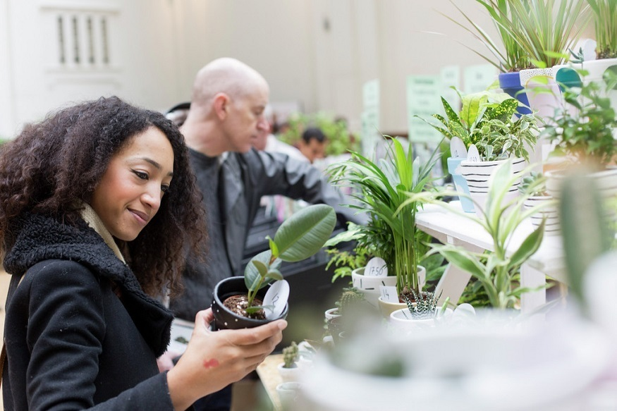 From Perfume To Terrariums, Learn How To Get Creative With Plants