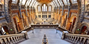 In Pictures: Stunning Snaps Of The Natural History Museum