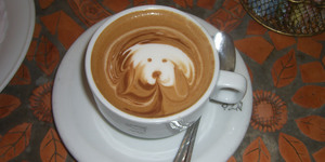 Best Dog-Friendly Cafes In London