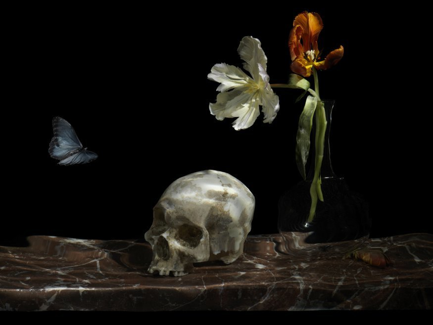 Modern Exhibition Stand Up Comedy : Exploding flowers skulls life and death at guildhall