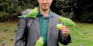 London's Parakeets: Everything You Need To Know
