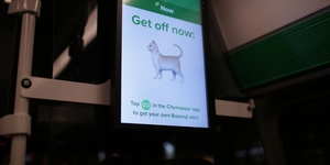 We Took A Ride On The Citymapper Night Bus