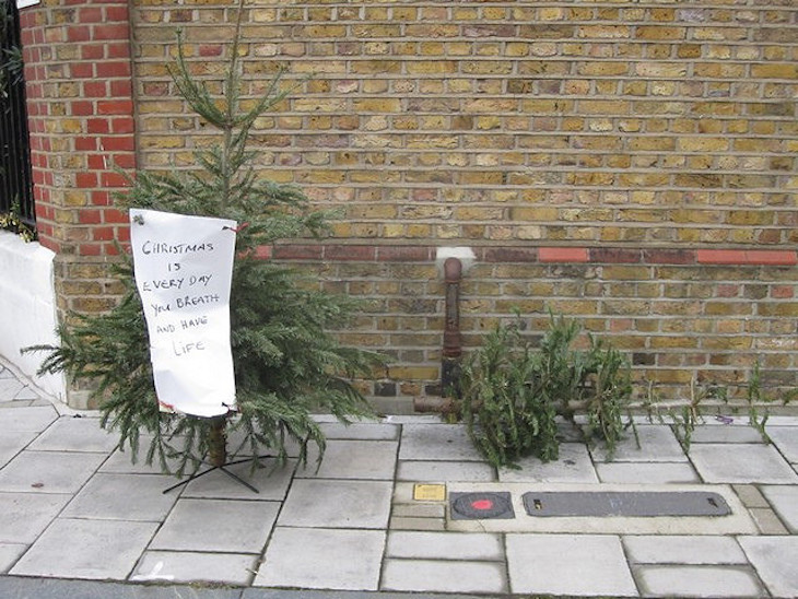 Recycle your Christmas tree in London and keep the festive spirit alive
