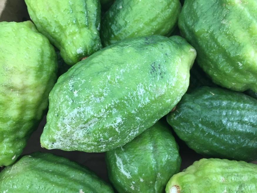 Fresh fruit on sale at Whitechapel Road Market