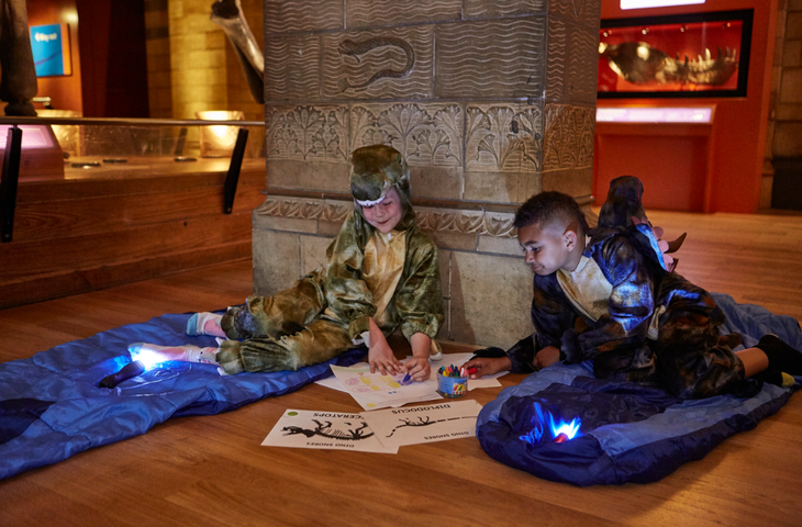 What To Do At Sleepover At Natural History Museum
