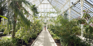 Kew Gardens' Temperate House Reopens