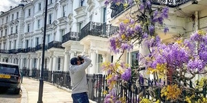 Wisteria Hysteria Hits London! The Best Pics From Instagram