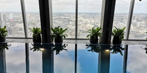 What's It Like Swimming In The Shard?