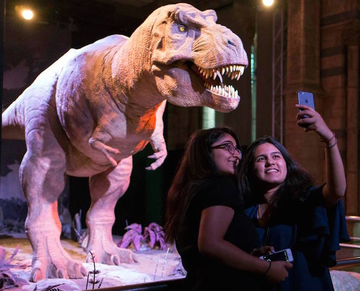 Natural History Museum Lates, Mother's Day ideas