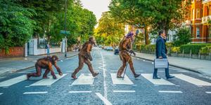 The Evolution Of Man... On The Abbey Road Crossing