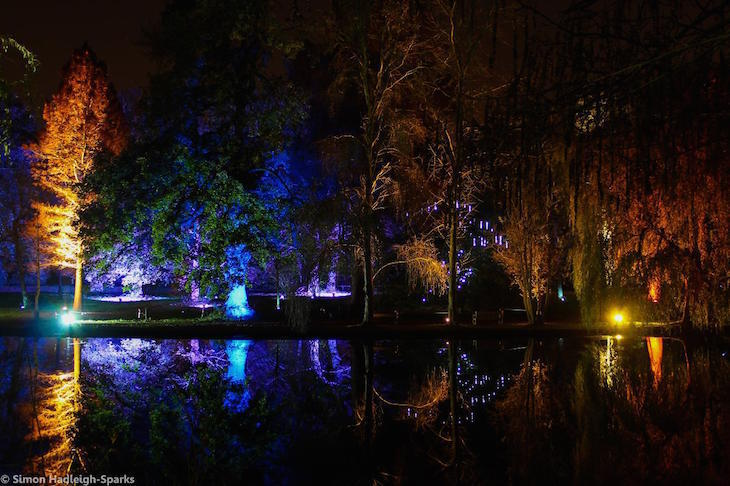 Enchanted Woodland light festival at Syon House and Syon Park, London