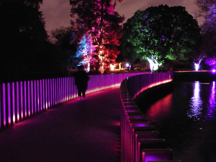 Christmas at Kew light festival at Kew Gardens, London