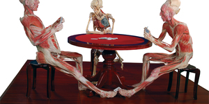 Give Me Some Skin! Permanent Body Worlds Exhibition Comes To London