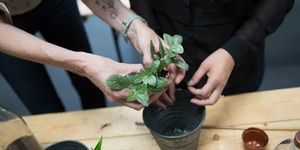 This Urban Garden Show Proves You Can Get Green-Fingered In The Pokiest Of Places