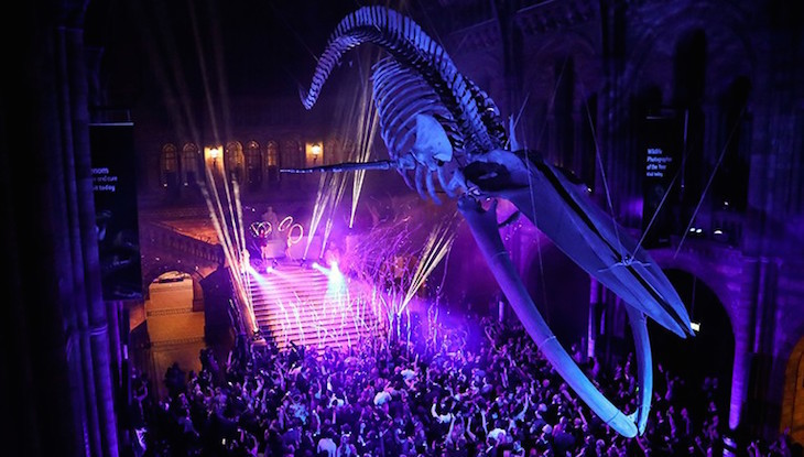 New Year's Eve party at Natural History Museum, London